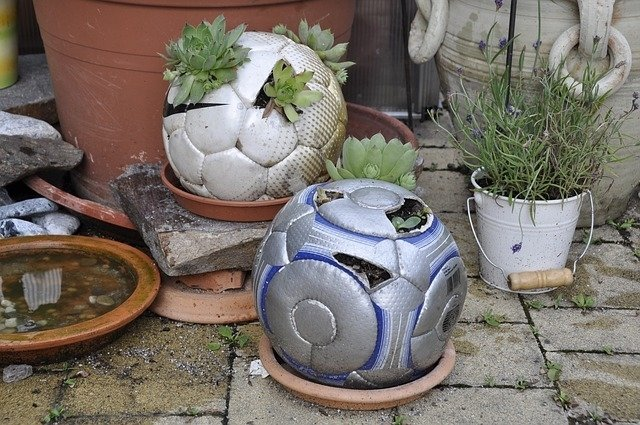 Sustainable upcycling garden activities